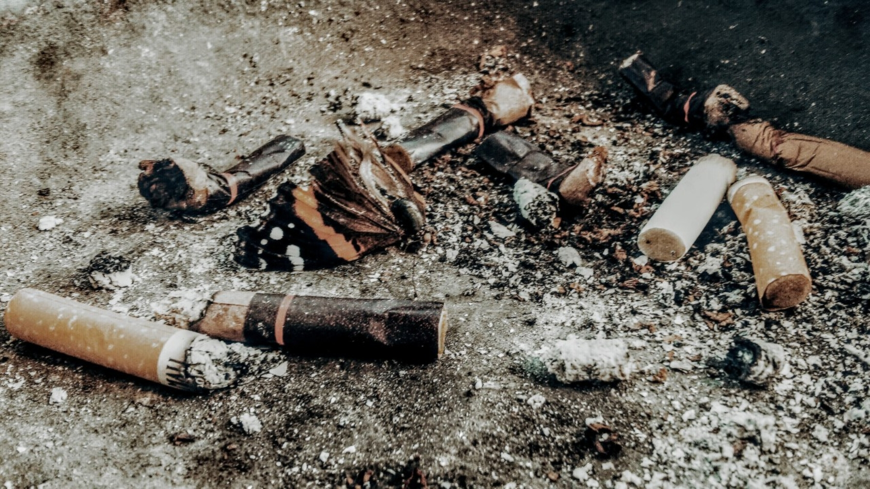 Cigarette butts and ashes symbolize toxic family traits.